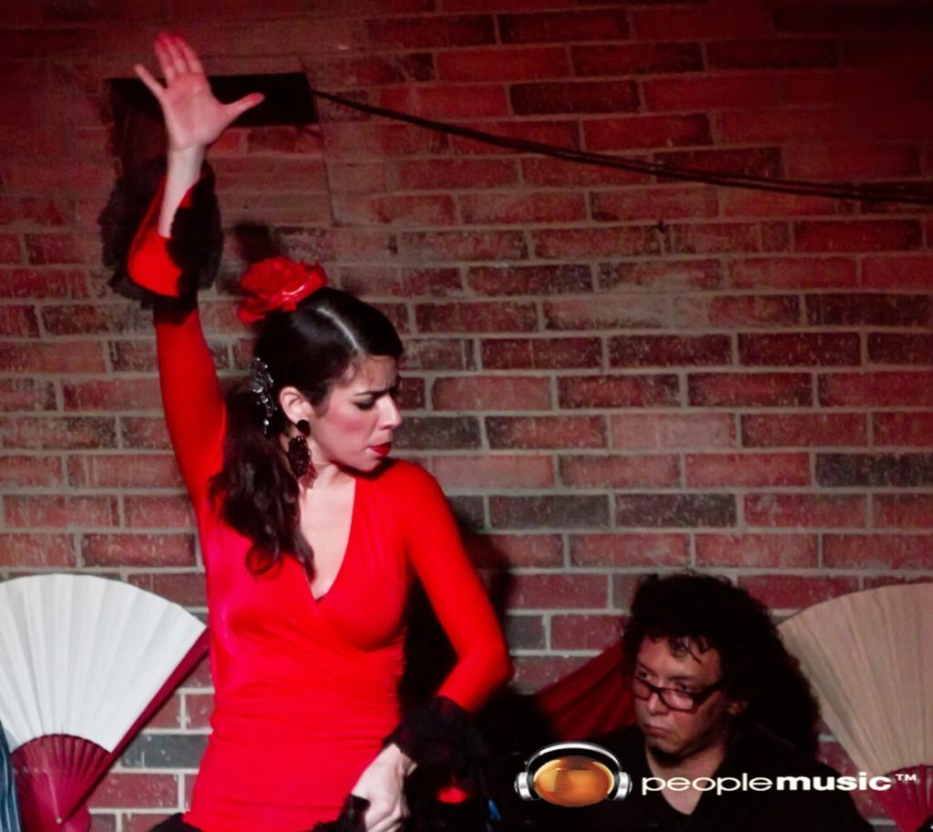 ANA BARCELO…Pasión y Flamenco el show